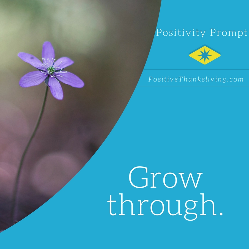 grow through - with love, learning and laughter