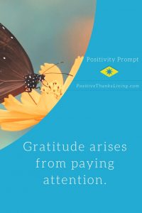 Gratitude arises from paying attention - #thanksliving #thankfulness