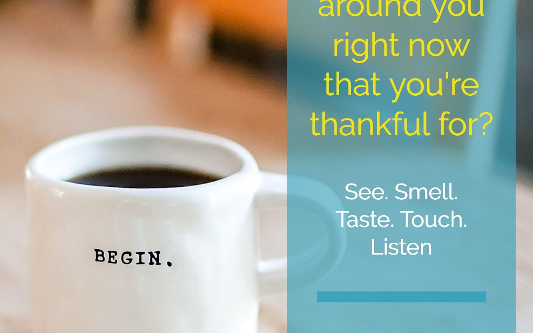 Pay Attention – Give Thanks