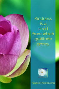 Kindness is a seed from which gratitude grows - #thankfulThursday