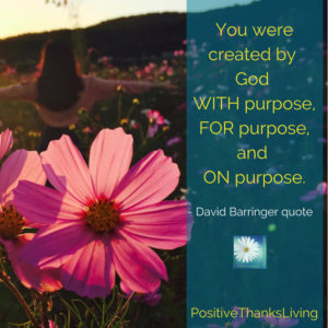 You were created by God WITH purpose, FOR purpose, and ON purpose.