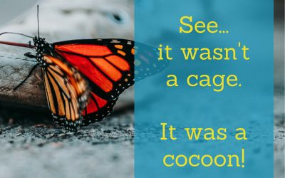 You're not stuck – you're in a cocoon!