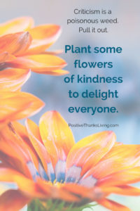 Criticism is a weed. Plant some flowers of kindness. PositiveThanksLiving