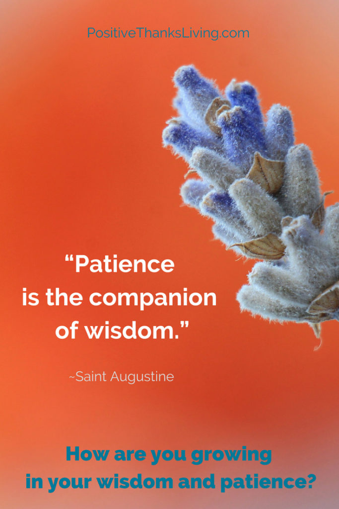 How are you growing in your wisdom and patience_ Patience is the companion of wisdom.
