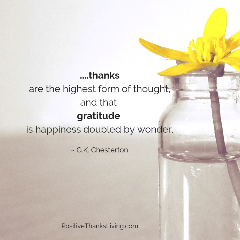 gratitude happiness doubled by wonder