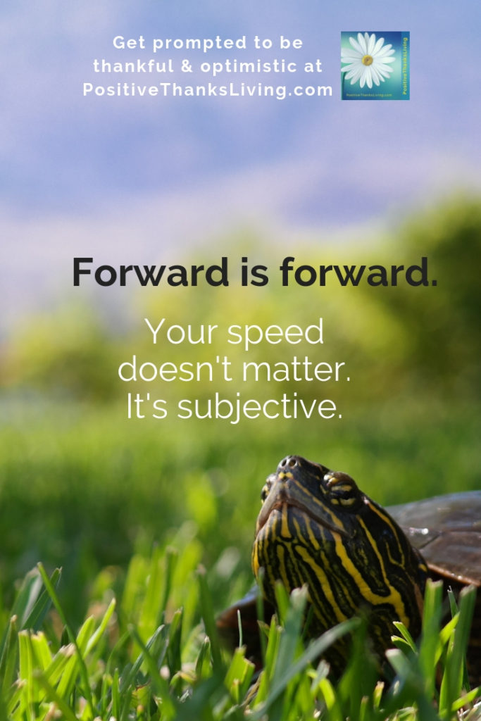 Speed is subjective - Forward is forward. #positive #optimistic #goals #thankful #positivethanksliving