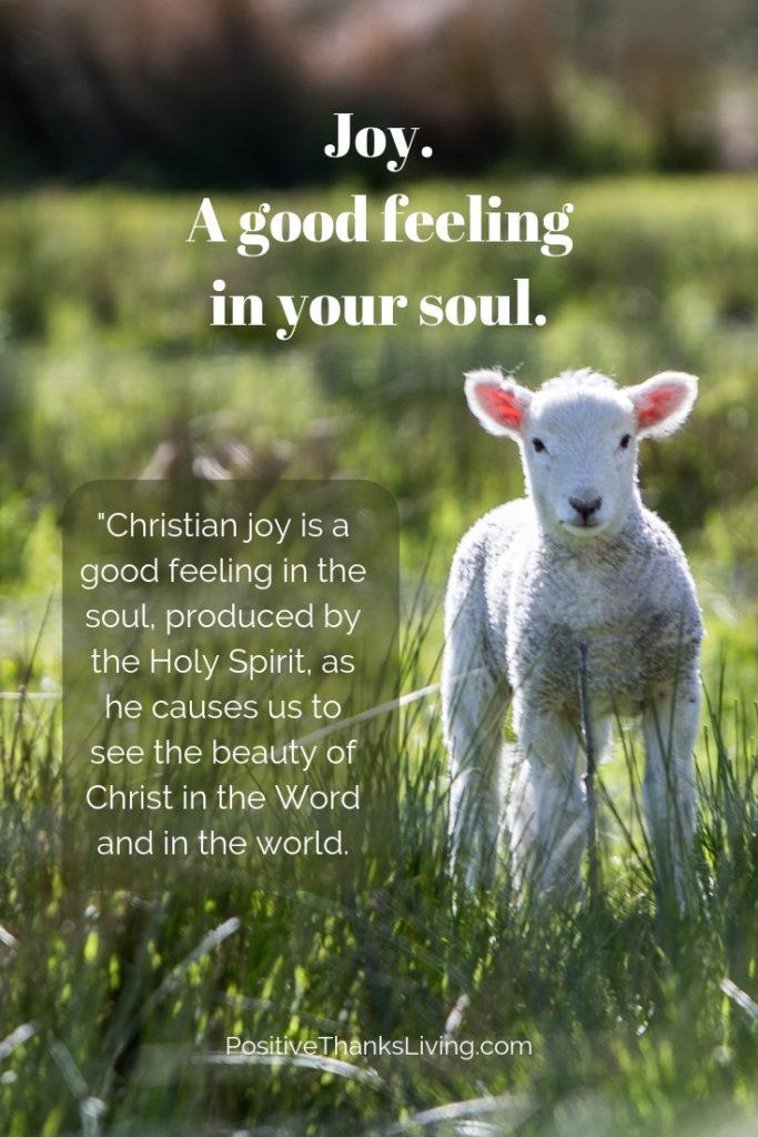 Joy - a good feeling in your soul.